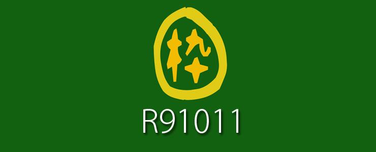 R91011-EC